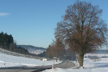 Zimní Bobrová